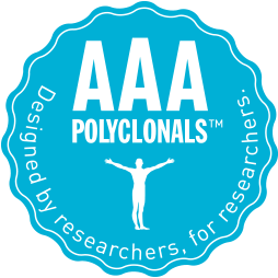 Triple A Polyclonals - the antibodies used in the Brain Atlas